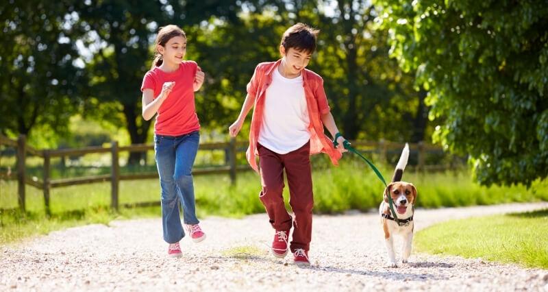 Dog Friendly San Marcos | Dog Friendly Adventures