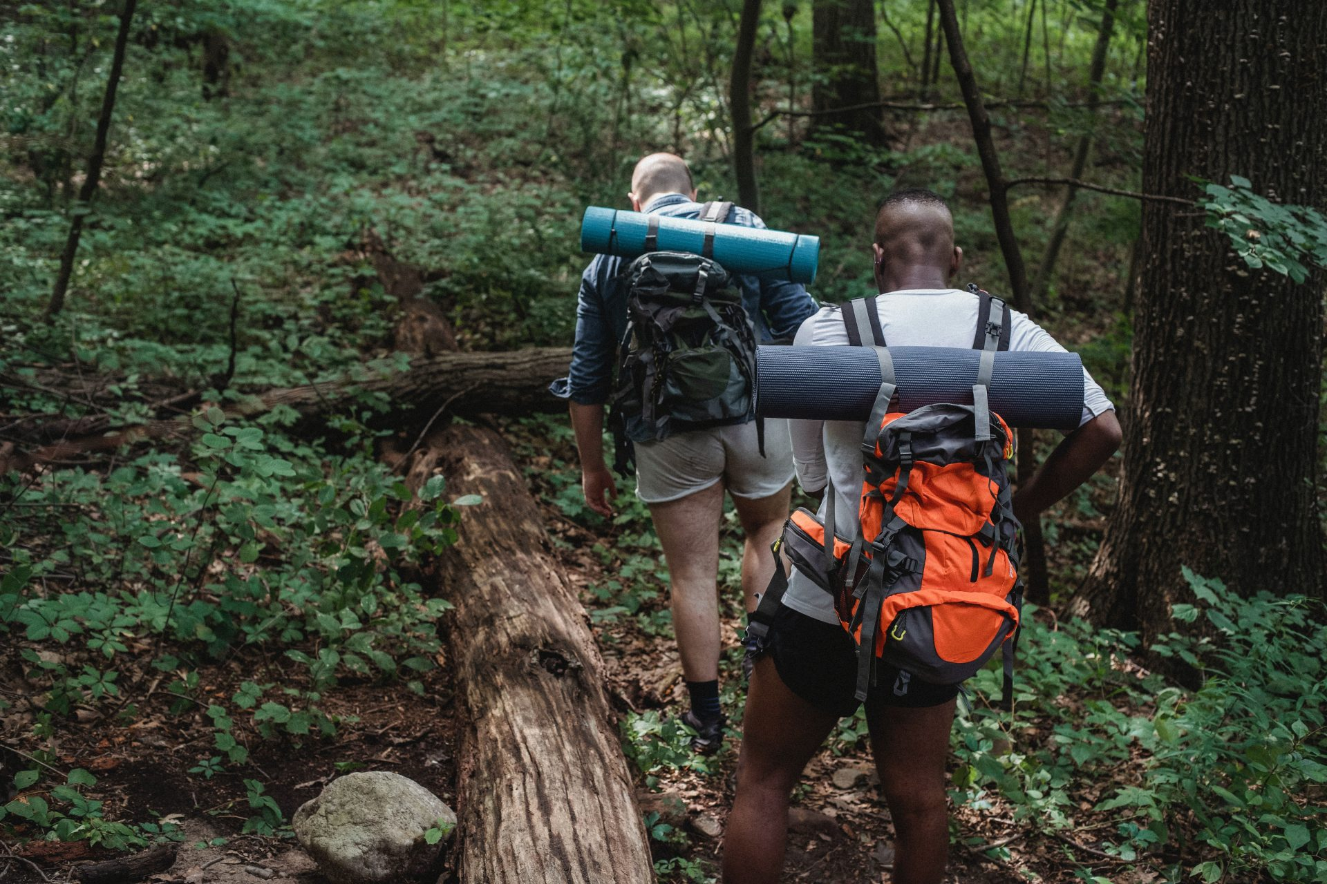 6 Amazing Trails for Fall Hiking Near Leisure Resort